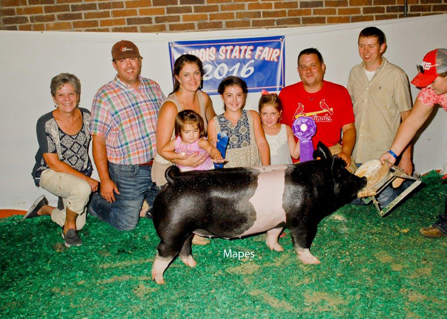 Champion Crossbred Barrow, 2016 Illinois State Fair Open Show - Ella & Claire Bobell